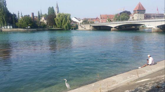 Nadar en el Lago Constanza
